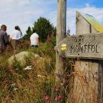 Chemin vers le Montfol
