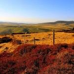 Paysage de printemps entre les Grenons et Touzière